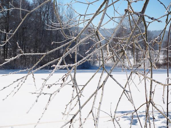 Kouzlo zimy na Lipně