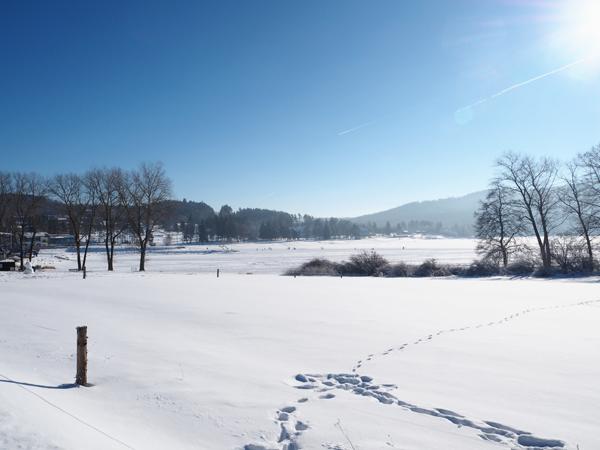 Zimní atmosféra na Lipně
