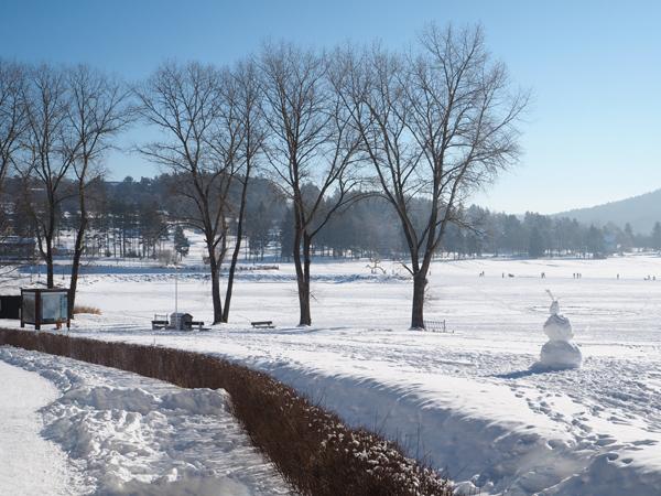 Zimní příroda na Lipně