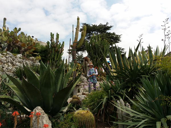 Jardin Exotique v Eze